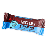 Blueberry Paleo Bars - Blue Dinosaur